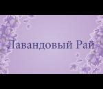 визитки лавандовый рай (1)
